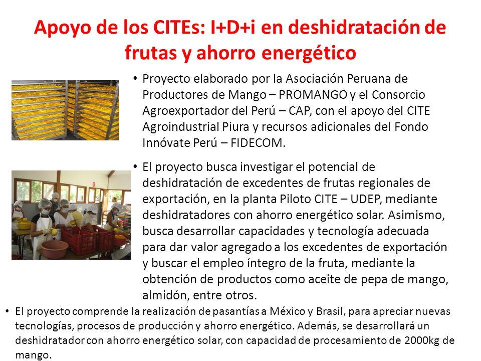 Apoyo de los CITEs: I+D+i en deshidratación de frutas y ahorro energético Proyecto elaborado por la Asociación Peruana de Productores de Mango – PROMA