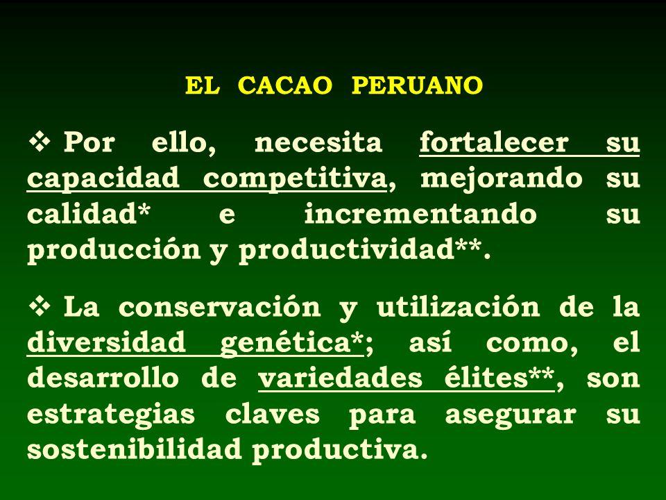 EL CACAO PERUANO Por ello, necesita fortalecer su capacidad competitiva, mejorando su calidad* e incrementando su producción y productividad**. La con