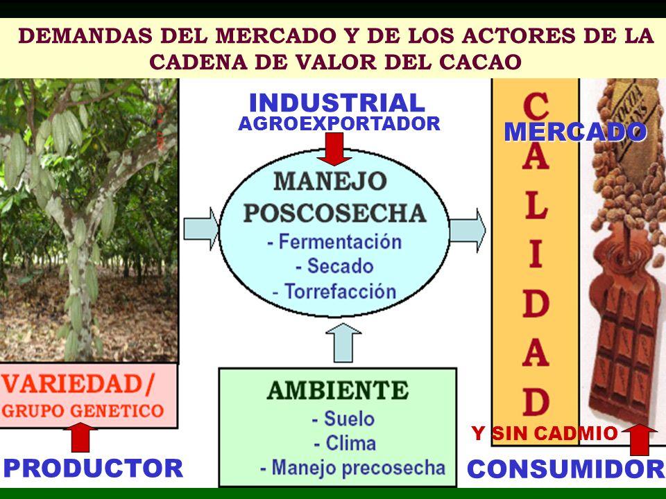 INDUSTRIAL PRODUCTOR CONSUMIDOR DEMANDAS DEL MERCADO Y DE LOS ACTORES DE LA CADENA DE VALOR DEL CACAO AGROEXPORTADOR MERCADO Y SIN CADMIO