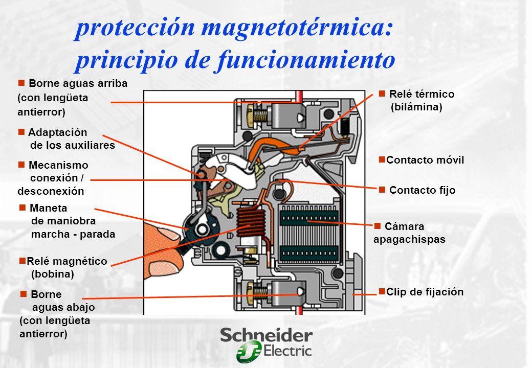 protección de personas y bienes protección de personas y bienes Int.
