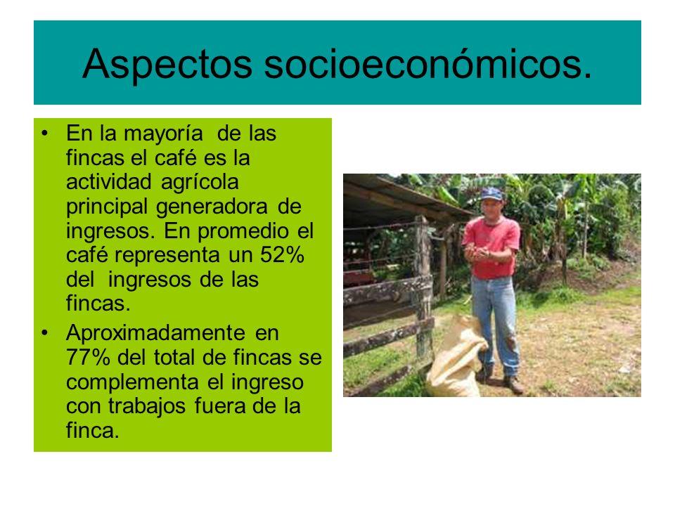Aspectos socioeconómicos.