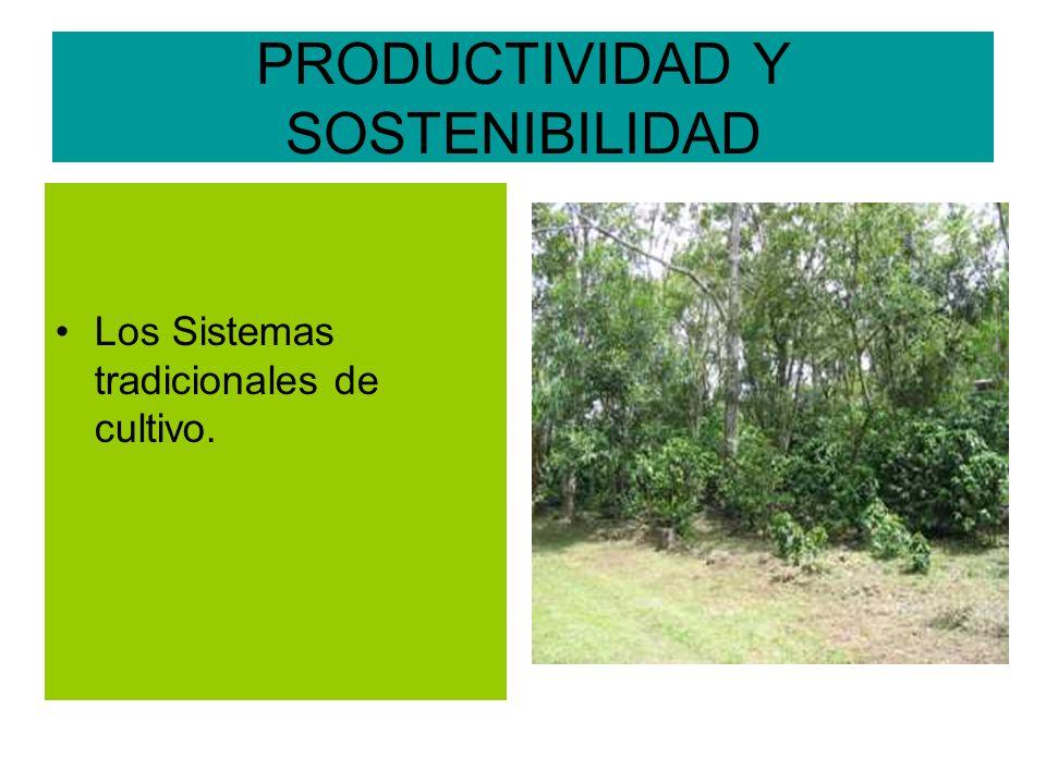 PRODUCTIVIDAD Y SOSTENIBILIDAD Los Sistemas tradicionales de cultivo.