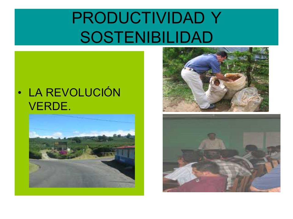 PRODUCTIVIDAD Y SOSTENIBILIDAD LA REVOLUCIÓN VERDE.