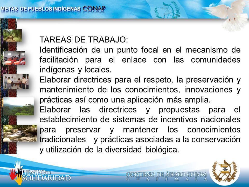 TAREAS DE TRABAJO: Identificación de un punto focal en el mecanismo de facilitación para el enlace con las comunidades indígenas y locales. Elaborar d
