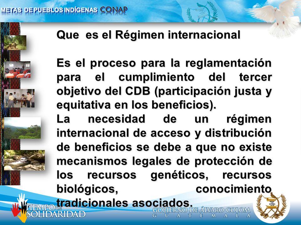 Que es el Régimen internacional Es el proceso para la reglamentación para el cumplimiento del tercer objetivo del CDB (participación justa y equitativ