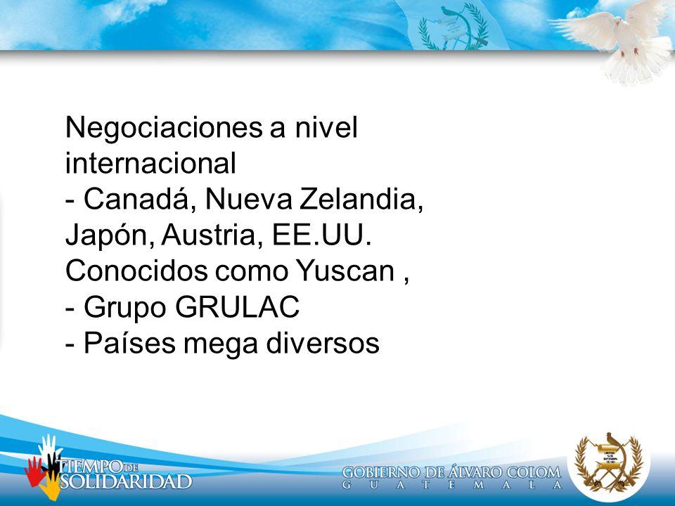 Negociaciones a nivel internacional - Canadá, Nueva Zelandia, Japón, Austria, EE.UU. Conocidos como Yuscan, - Grupo GRULAC - Países mega diversos