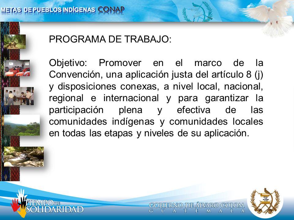 PROGRAMA DE TRABAJO: Objetivo: Promover en el marco de la Convención, una aplicación justa del artículo 8 (j) y disposiciones conexas, a nivel local,