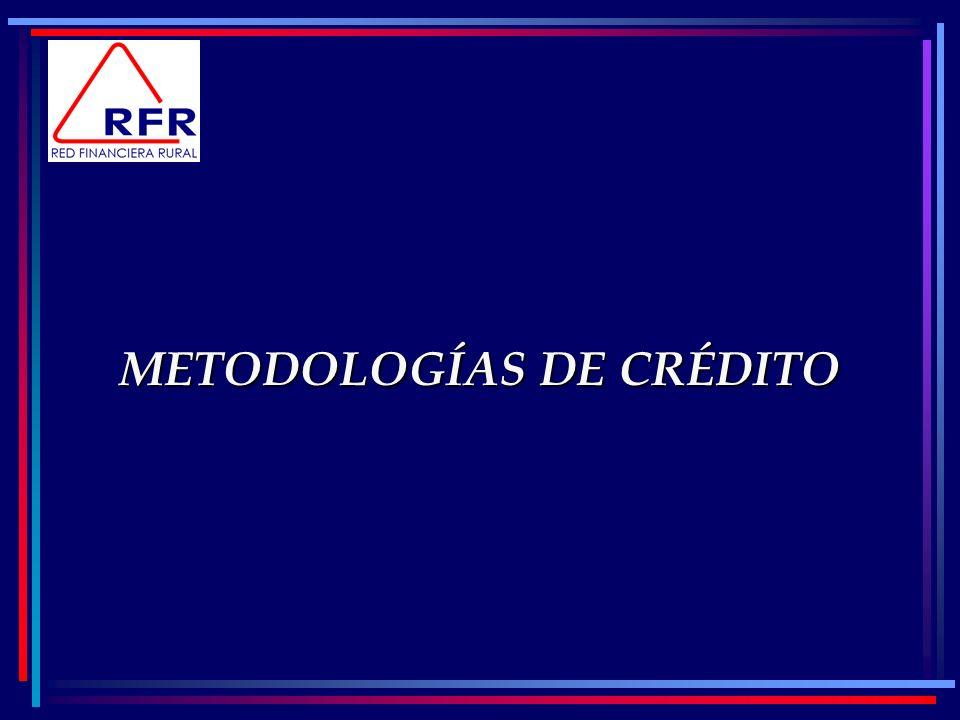 METODOLOGÍAS DE CRÉDITO