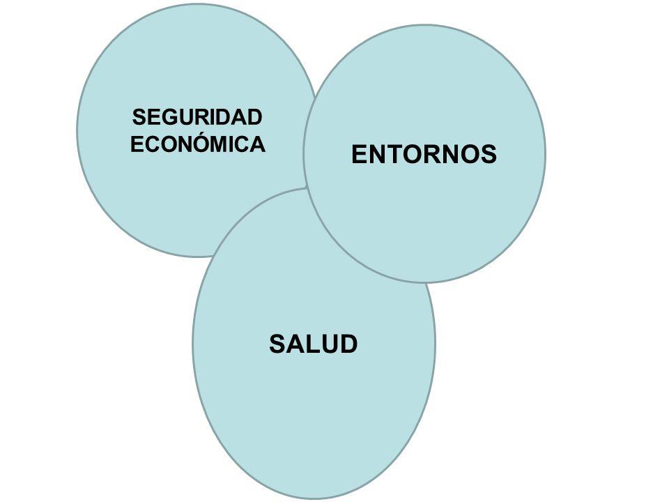 SEGURIDAD ECONÓMICA SALUD ENTORNOS