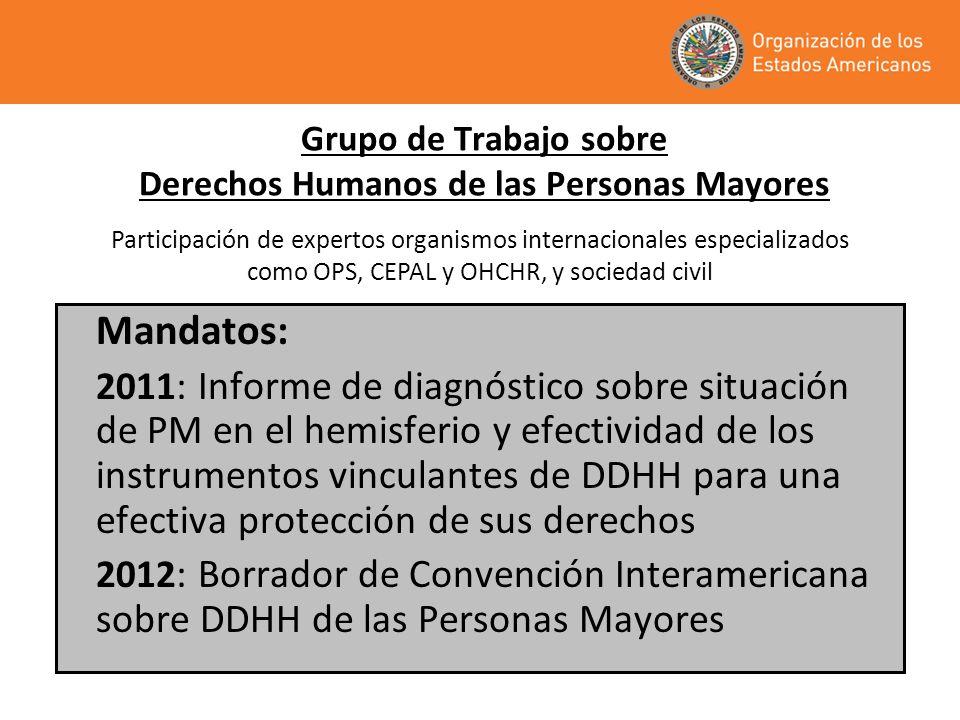 Grupo de Trabajo sobre Derechos Humanos de las Personas Mayores Mandatos: 2011 : Informe de diagnóstico sobre situación de PM en el hemisferio y efect