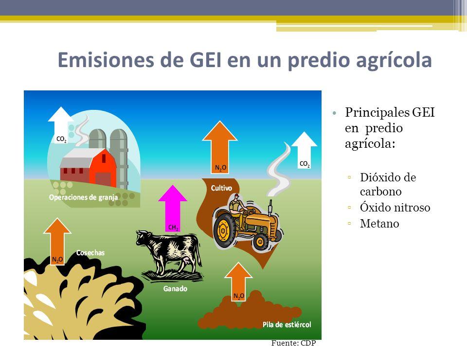 Emisiones de GEI en un predio agrícola Principales GEI en predio agrícola: Dióxido de carbono Óxido nitroso Metano Fuente: CDP