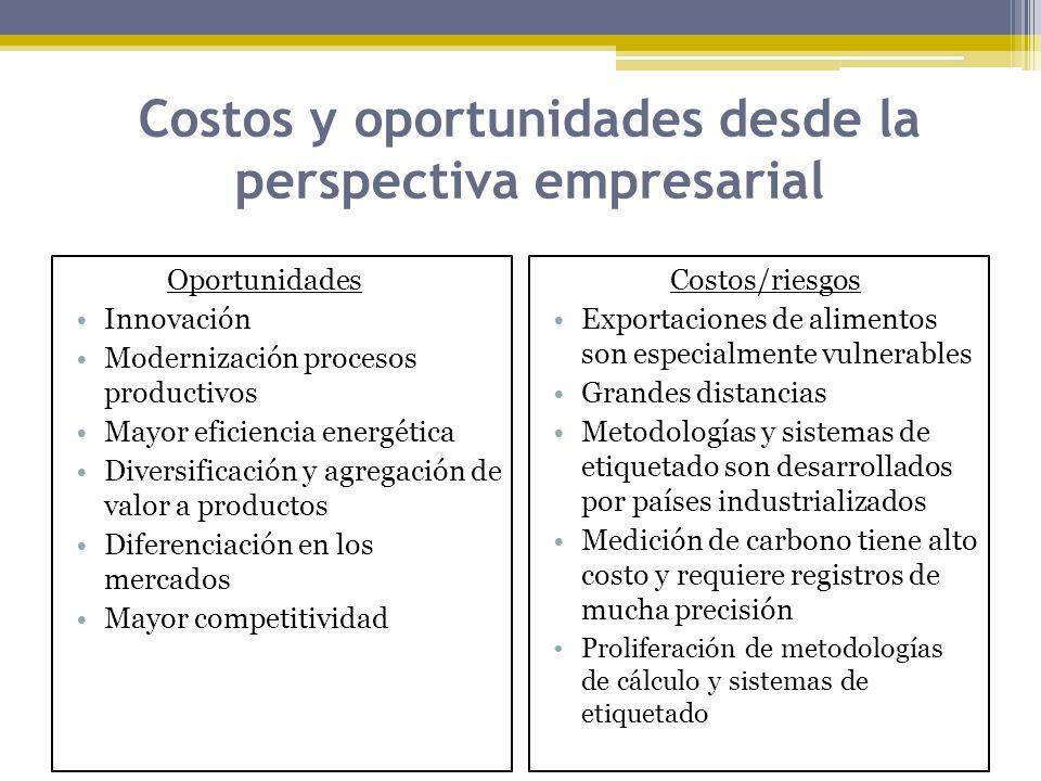 Costos y oportunidades desde la perspectiva empresarial Oportunidades Innovación Modernización procesos productivos Mayor eficiencia energética Divers