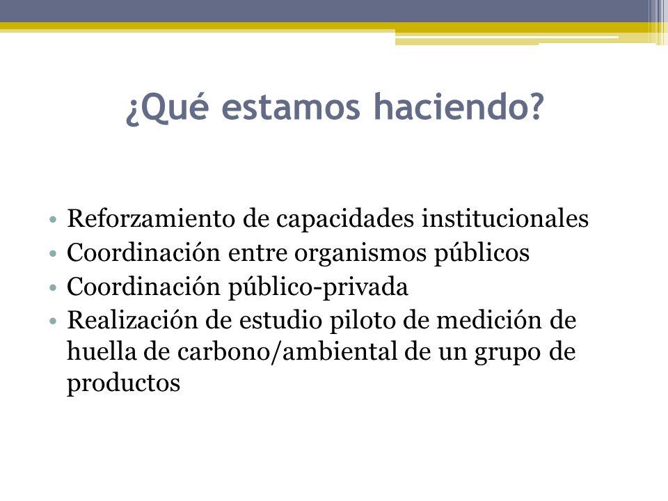 ¿Qué estamos haciendo? Reforzamiento de capacidades institucionales Coordinación entre organismos públicos Coordinación público-privada Realización de