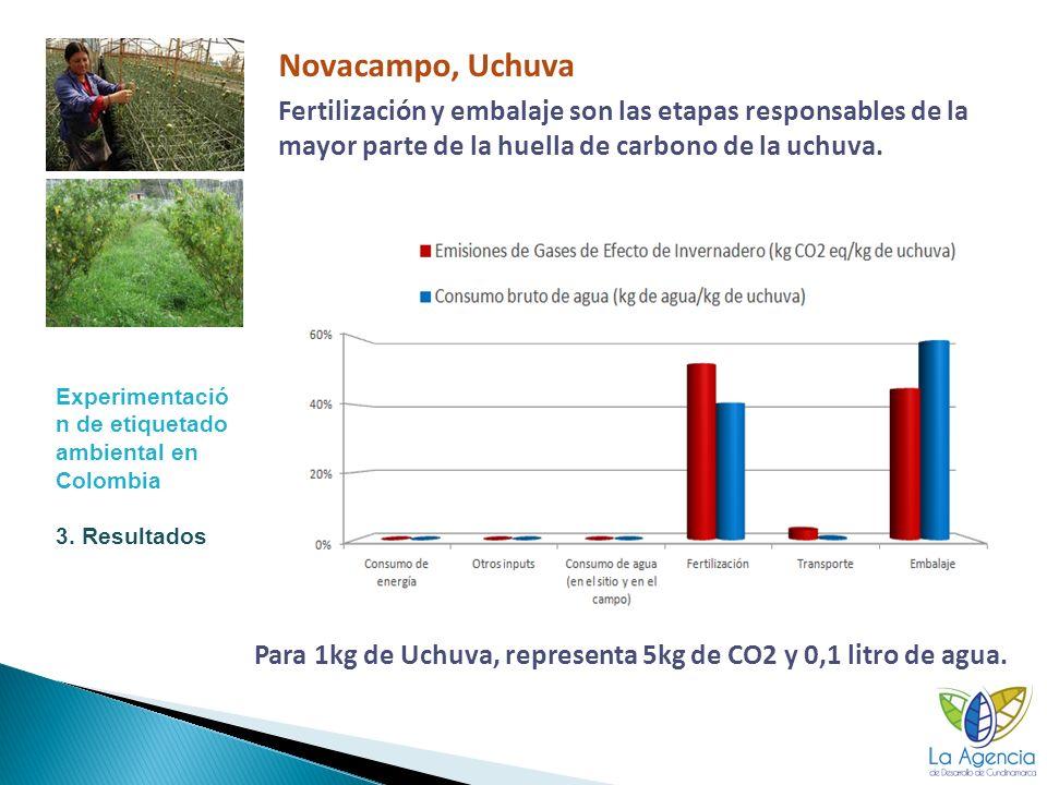 15 Novacampo, Uchuva Fertilización y embalaje son las etapas responsables de la mayor parte de la huella de carbono de la uchuva.