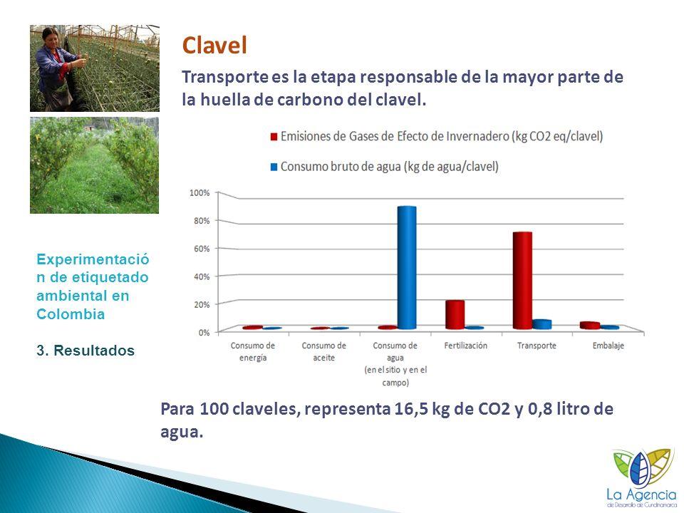 Para 100 claveles, representa 16,5 kg de CO2 y 0,8 litro de agua.