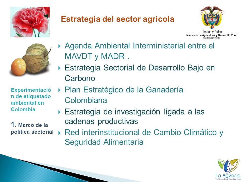 Experimentació n de etiquetado ambiental en Colombia 2.