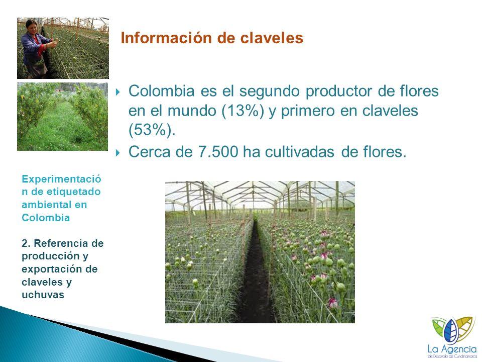 Experimentació n de etiquetado ambiental en Colombia 3. Resultados