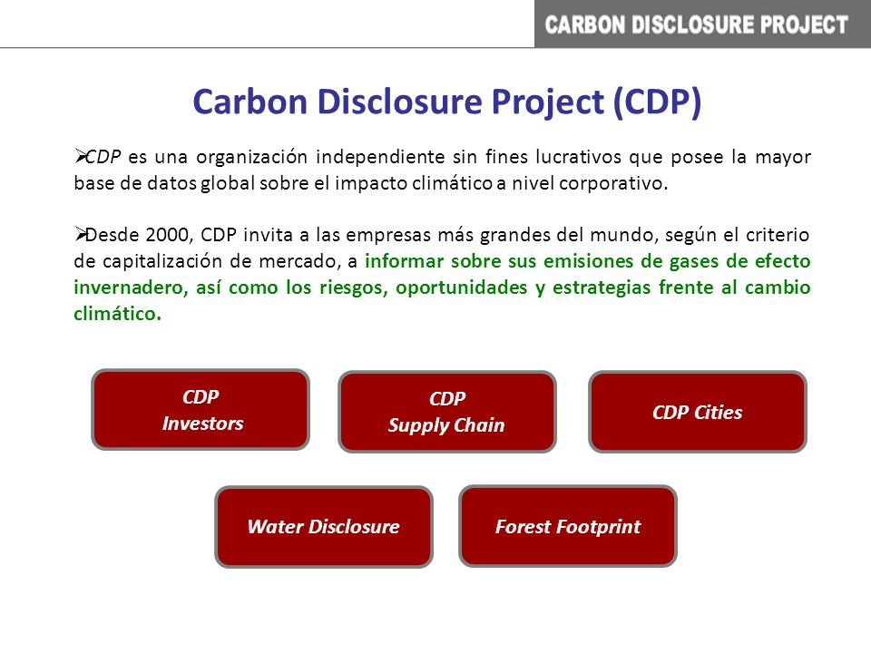CDP es una organización independiente sin fines lucrativos que posee la mayor base de datos global sobre el impacto climático a nivel corporativo.