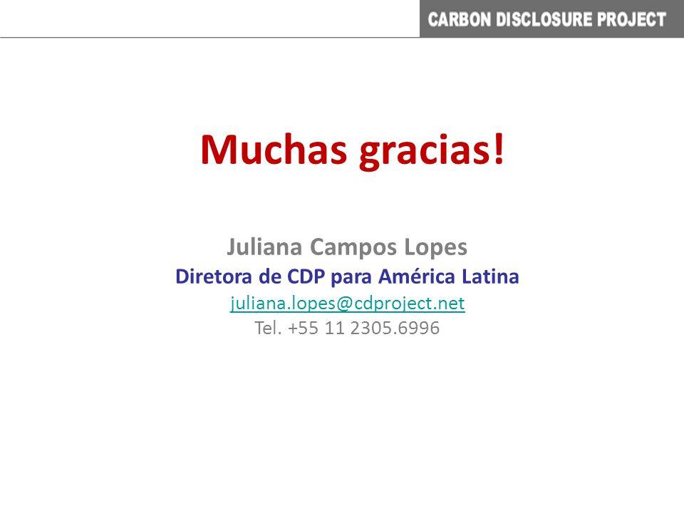 Muchas gracias! Juliana Campos Lopes Diretora de CDP para América Latina juliana.lopes@cdproject.net Tel. +55 11 2305.6996