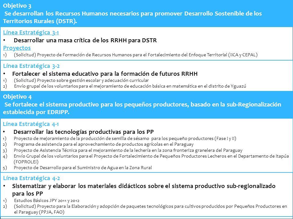 Objetivo 3 Se desarrollan los Recursos Humanos necesarios para promover Desarrollo Sostenible de los Territorios Rurales (DSTR). Línea Estratégica 3-1