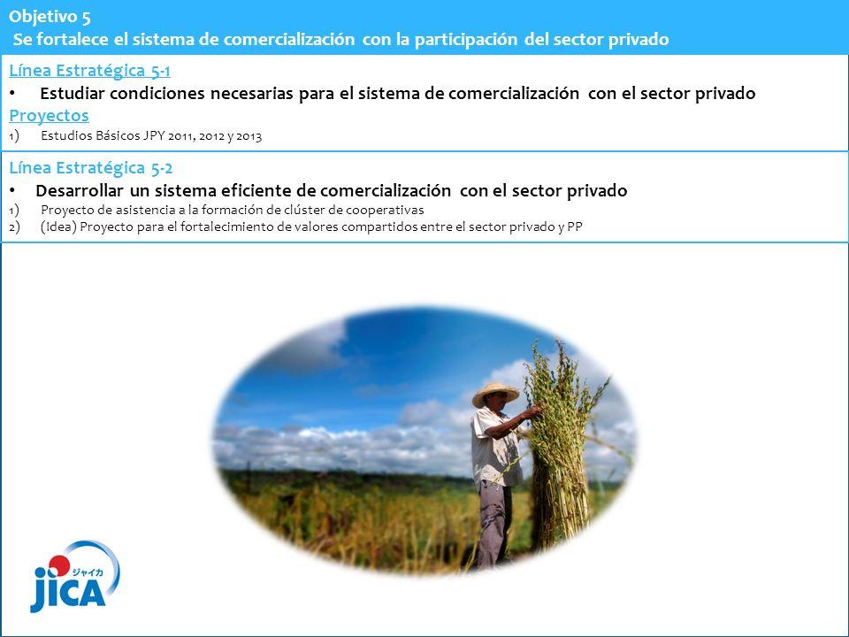 Objetivo 5 Se fortalece el sistema de comercialización con la participación del sector privado Línea Estratégica 5-1 Estudiar condiciones necesarias p