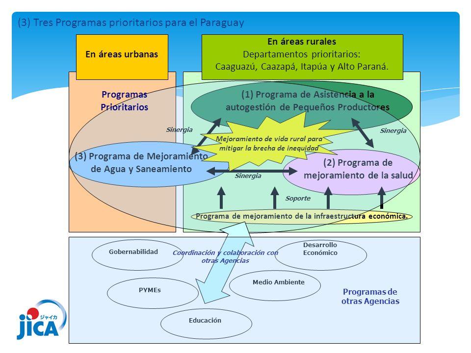 En áreas urbanas En áreas rurales Departamentos prioritarios: Caaguazú, Caazapá, Itapúa y Alto Paraná. (1) Programa de Asistencia a la autogestión de