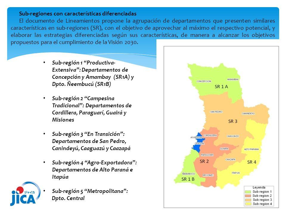 Sub-regiones con características diferenciadas El documento de Lineamientos propone la agrupación de departamentos que presenten similares característ