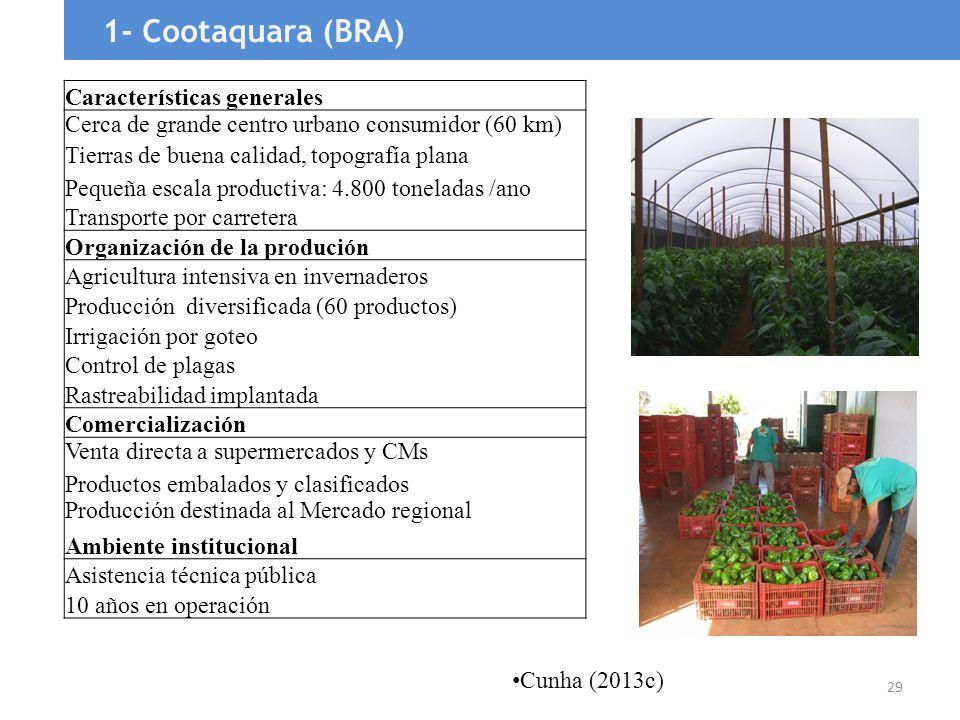 29 1- Cootaquara (BRA) Características generales Cerca de grande centro urbano consumidor (60 km) Tierras de buena calidad, topografía plana Pequeña e