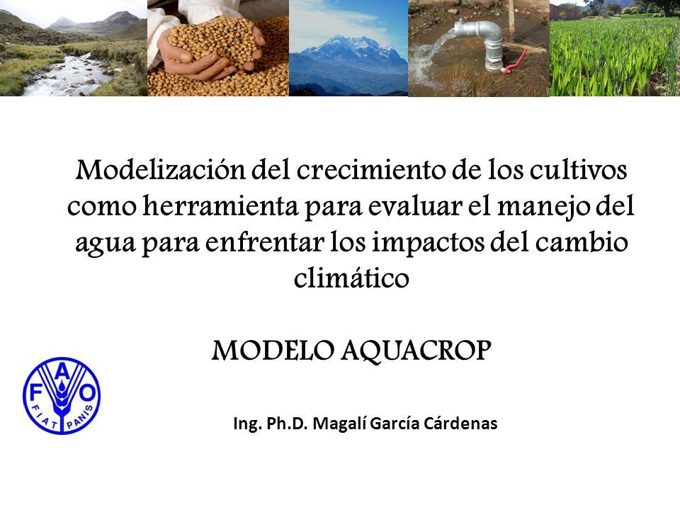 Modelización del crecimiento de los cultivos como herramienta para evaluar el manejo del agua para enfrentar los impactos del cambio climático MODELO