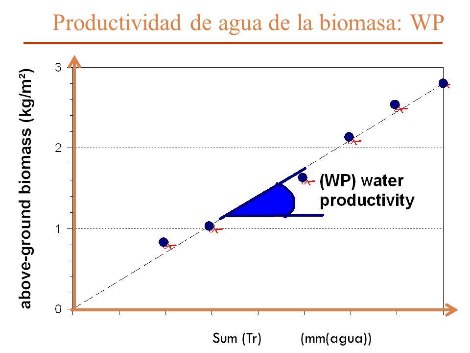 14 Sum (Tr) (mm(agua)) Productividad de agua de la biomasa: WP