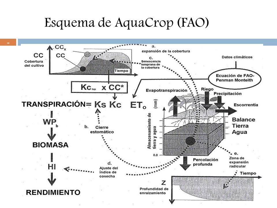 19 Esquema de AquaCrop (FAO)