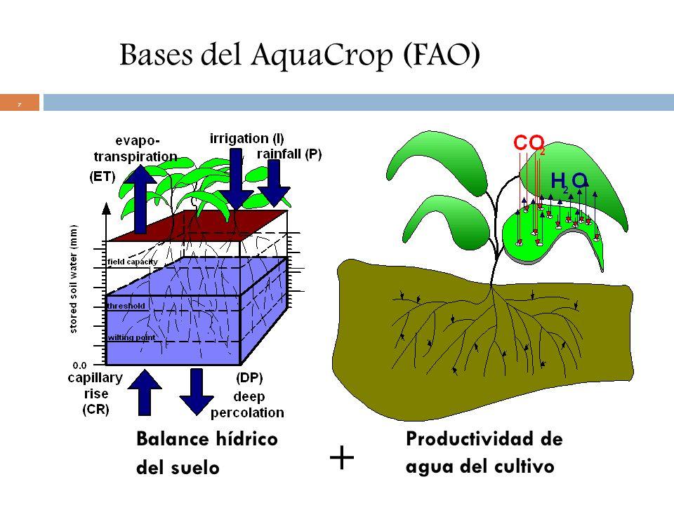 7 Bases del AquaCrop (FAO) Balance hídrico del suelo Productividad de agua del cultivo +