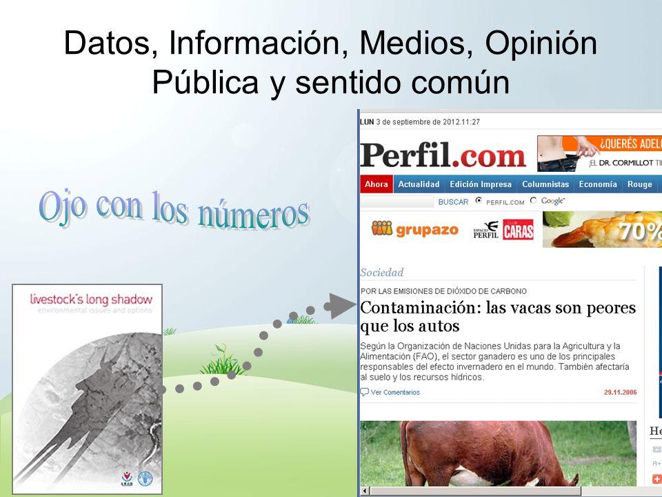 Datos, Información, Medios, Opinión Pública y sentido común