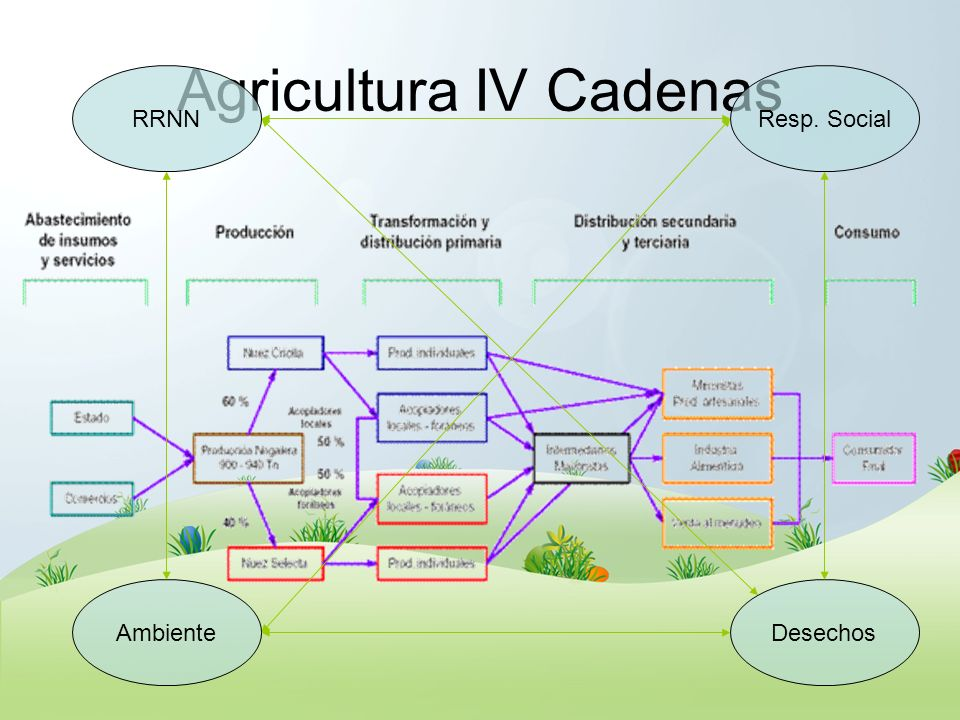 Agricultura IV Cadenas RRNN DesechosAmbiente Resp. Social
