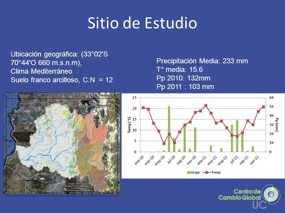 Sitio de Estudio Ubicación geográfica: (33°02'S 70°44'O 660 m.s.n.m), Clima Mediterráneo Suelo franco arcilloso, C:N = 12 Precipitación Media: 233 mm
