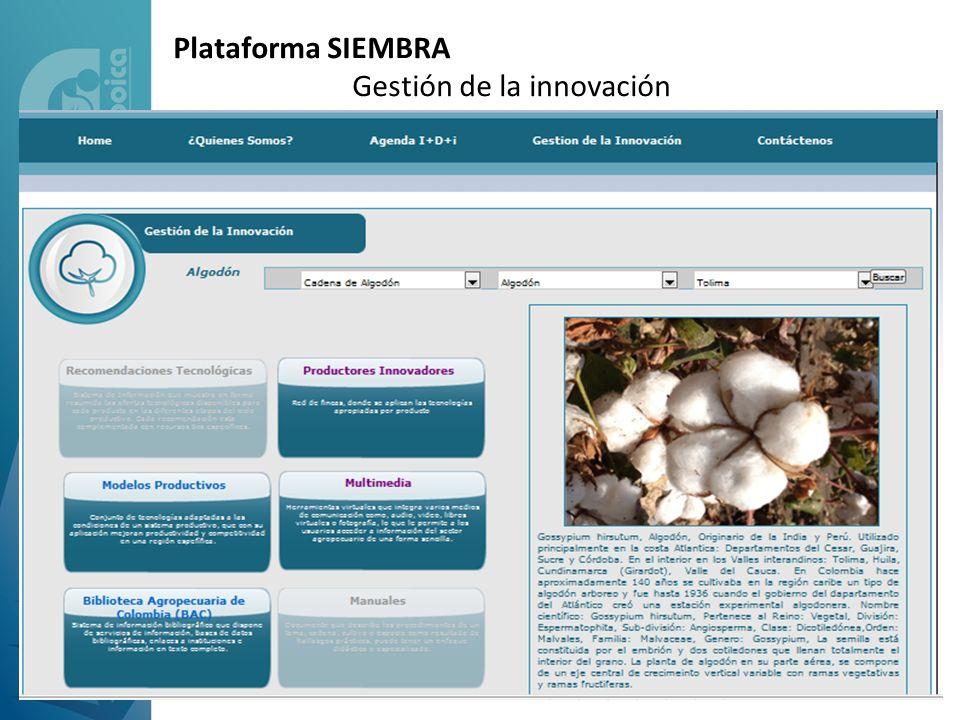 Plataforma SIEMBRA Gestión de la innovación
