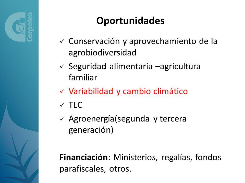 Oportunidades Conservación y aprovechamiento de la agrobiodiversidad Seguridad alimentaria –agricultura familiar Variabilidad y cambio climático TLC A