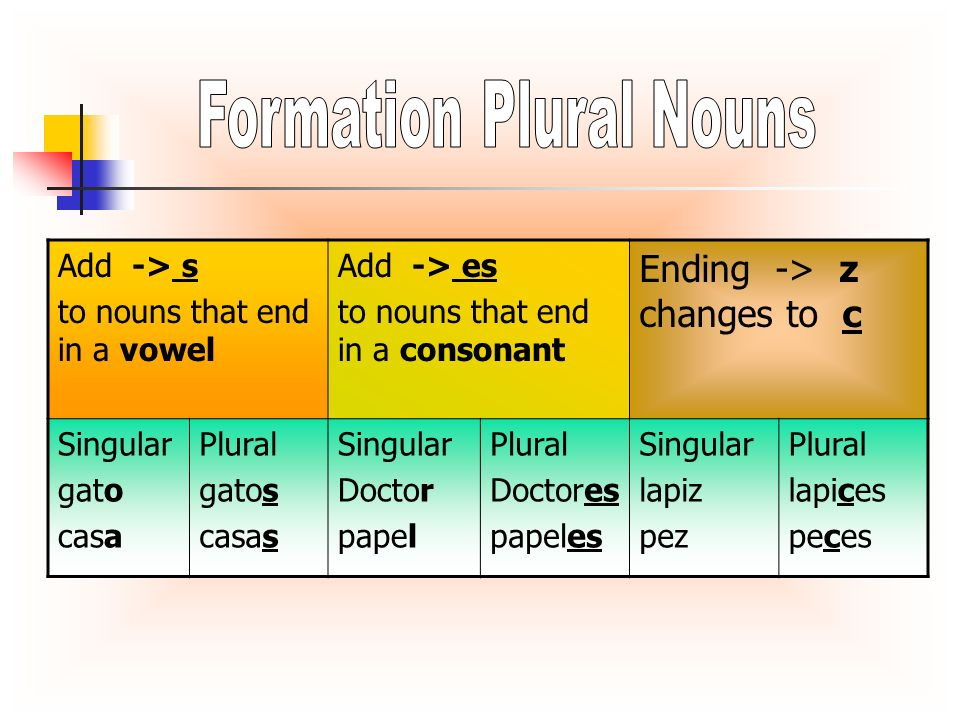 Add -> s to nouns that end in a vowel Add -> es to nouns that end in a consonant Ending -> z changes to c Singular gato casa Plural gatos casas Singul