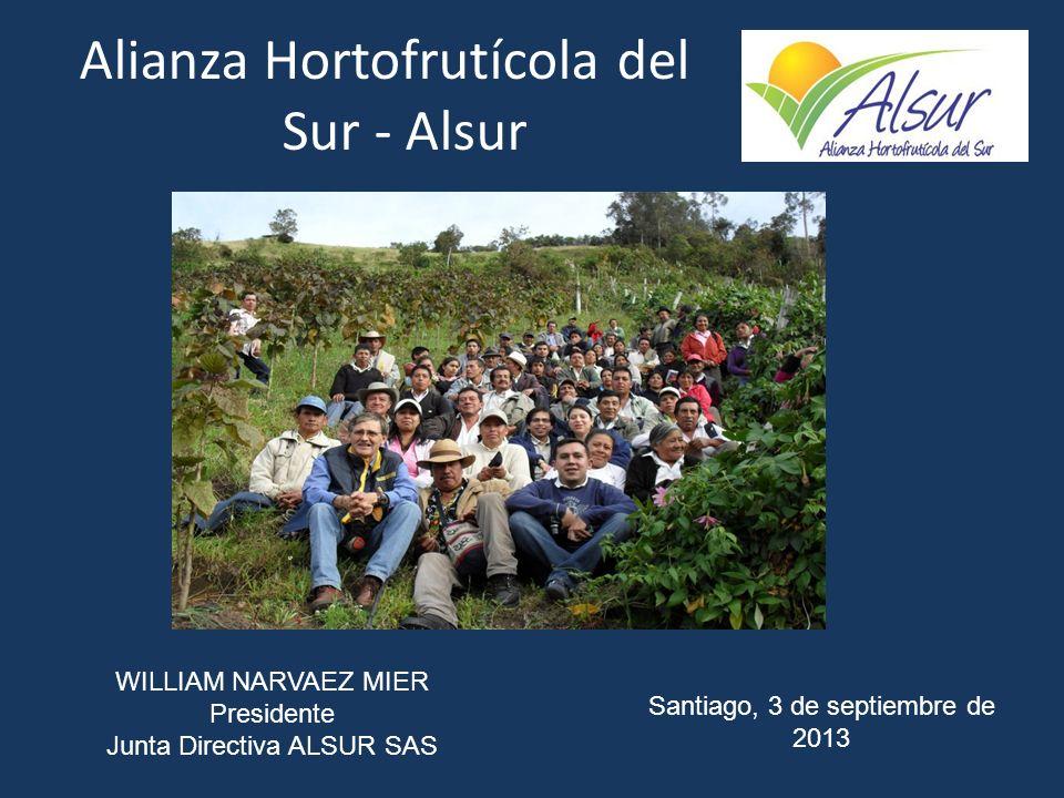 Alianza Hortofrutícola del Sur - Alsur WILLIAM NARVAEZ MIER Presidente Junta Directiva ALSUR SAS Santiago, 3 de septiembre de 2013