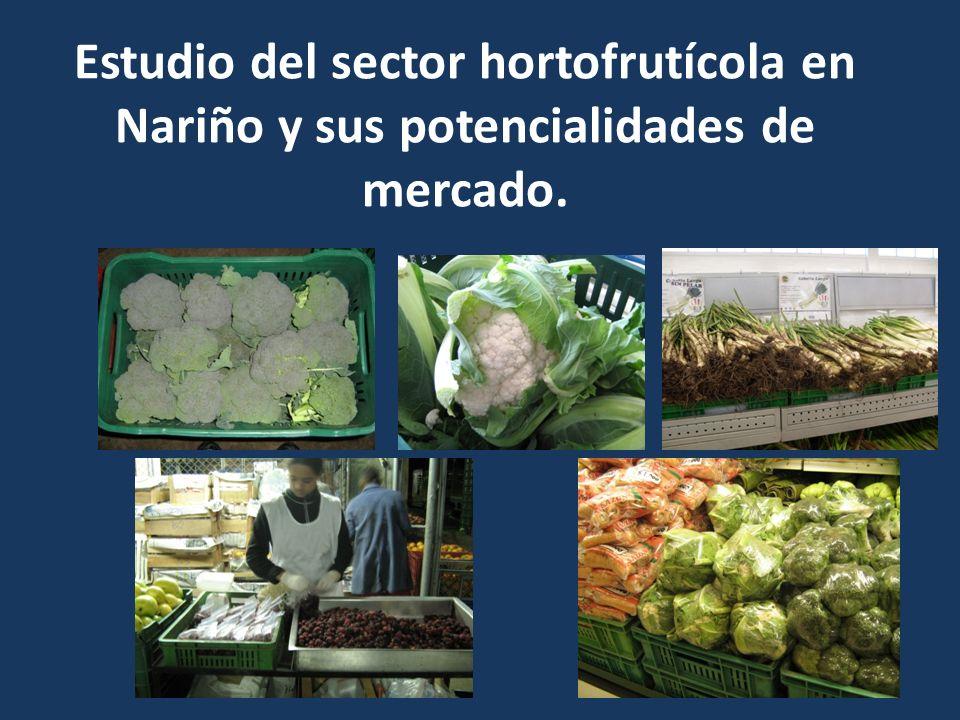 Estudio del sector hortofrutícola en Nariño y sus potencialidades de mercado.