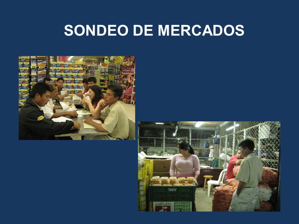 SONDEO DE MERCADOS