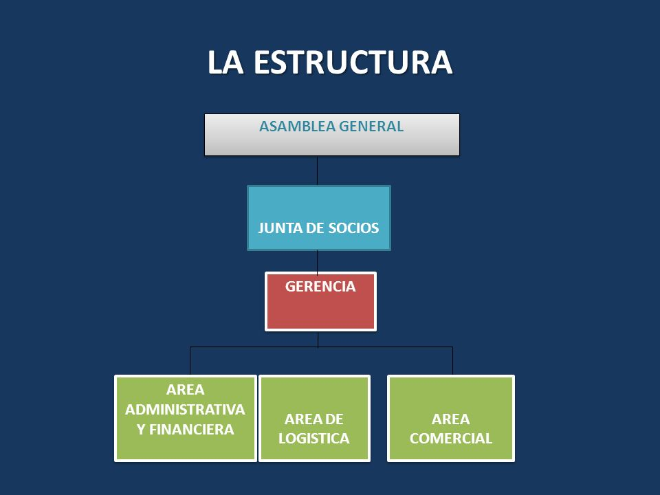 LA ESTRUCTURA ASAMBLEA GENERAL JUNTA DE SOCIOS GERENCIA AREA ADMINISTRATIVA Y FINANCIERA AREA COMERCIAL AREA DE LOGISTICA