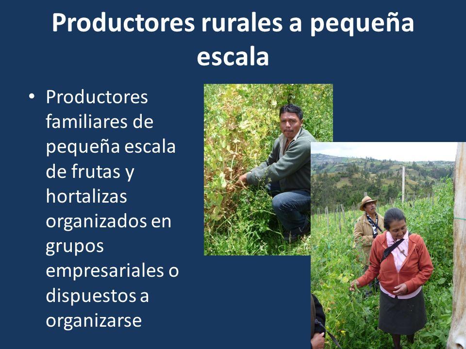 Productores rurales a pequeña escala Productores familiares de pequeña escala de frutas y hortalizas organizados en grupos empresariales o dispuestos