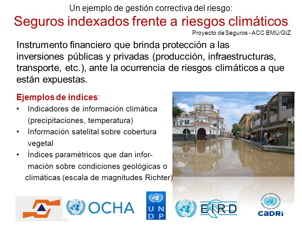 Instrumento financiero que brinda protección a las inversiones públicas y privadas (producción, infraestructuras, transporte, etc.), ante la ocurrenci