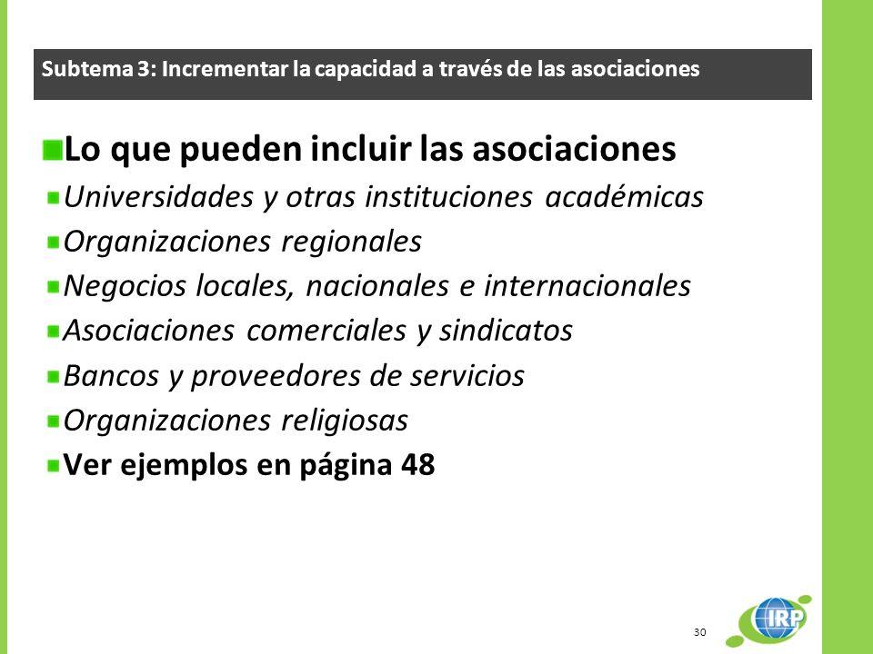 Lo que pueden incluir las asociaciones Universidades y otras instituciones académicas Organizaciones regionales Negocios locales, nacionales e interna
