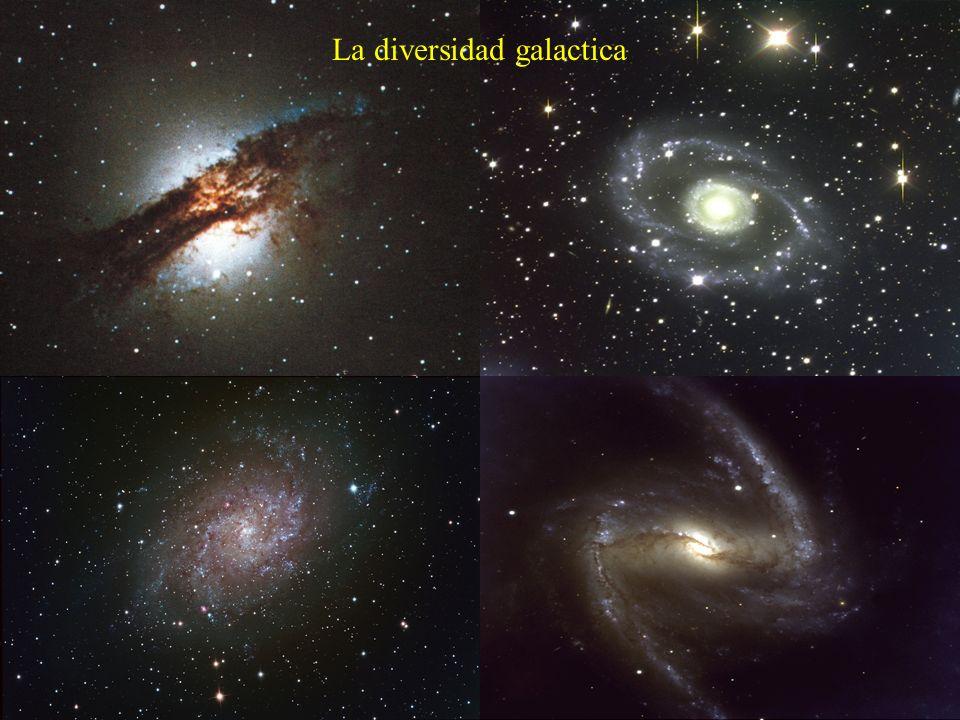 La diversidad galactica