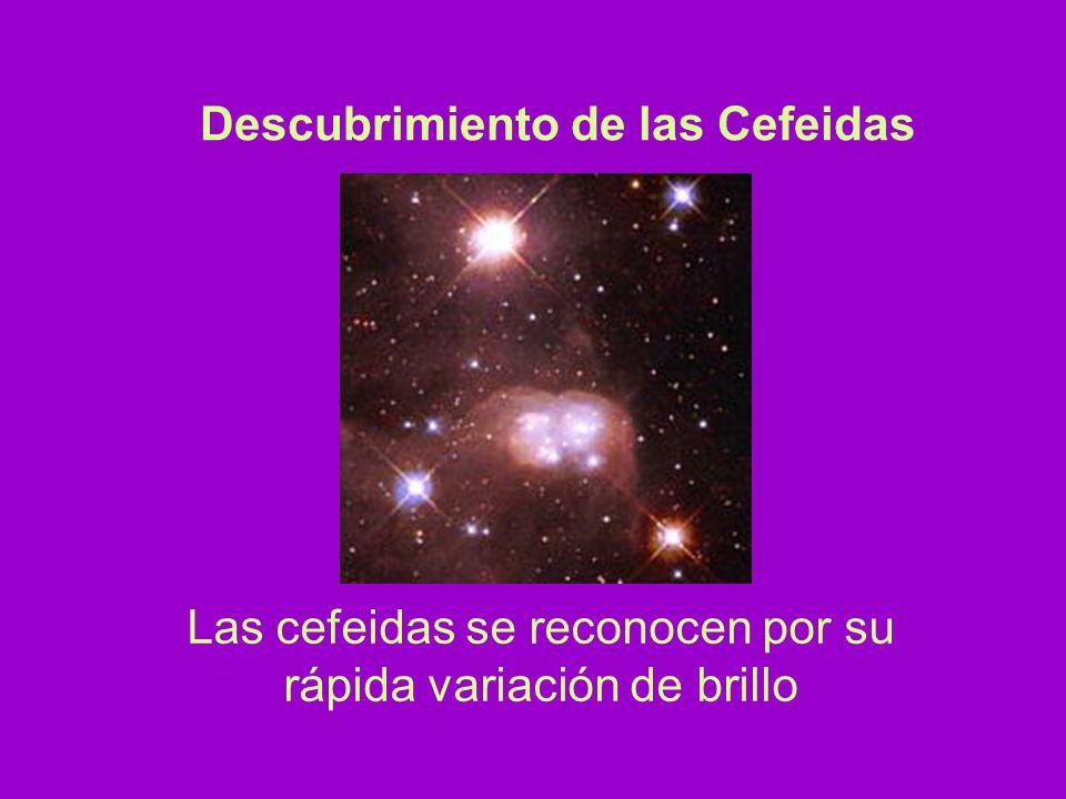 Se pueden ver a grandes distancias (varios millones de persecs Relación directa entre el período y la luminosidad CEFEIDAS