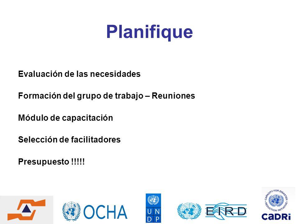 Planifique Evaluación de las necesidades Formación del grupo de trabajo – Reuniones Módulo de capacitación Selección de facilitadores Presupuesto !!!!