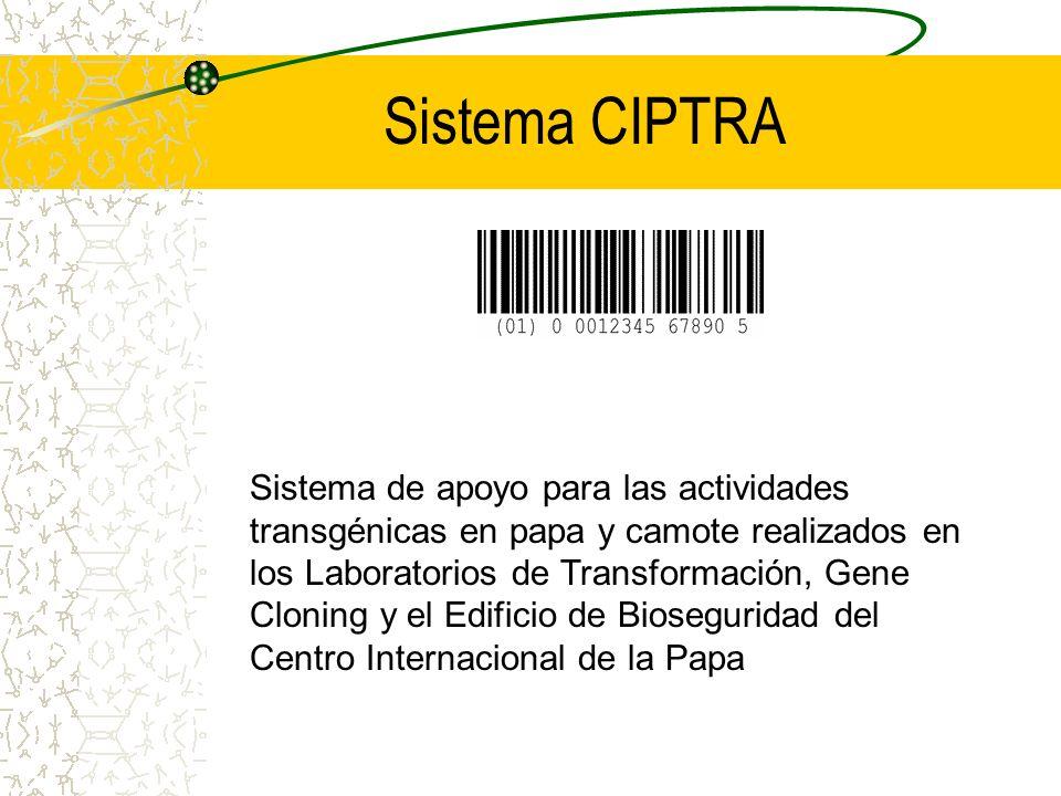Sistema CIPTRA Sistema de apoyo para las actividades transgénicas en papa y camote realizados en los Laboratorios de Transformación, Gene Cloning y el Edificio de Bioseguridad del Centro Internacional de la Papa