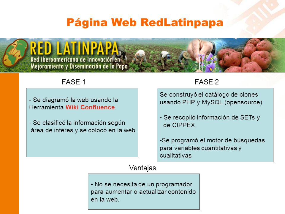 Página Web RedLatinpapa FASE 1 - Se diagramó la web usando la Herramienta Wiki Confluence.